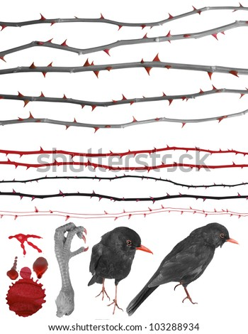 Thorny design elements of rose lines, birds, a claw, a color splash and drops in grey scale with red accentuation. Clipping paths for all photographed elements included. - stock photo