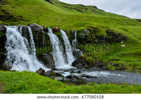 Thorsteinslundur waterfall  on overcast summer day in Iceland. Sheep in the background.