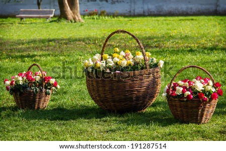 three baskets with roses on a grass