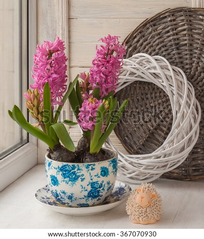 Three beautiful pink hyacinth in a pot with a vintage pattern next to the sweet lamb on the window. (mass-produced) - stock photo