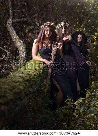 three beautiful young witches in dark forest - stock photo