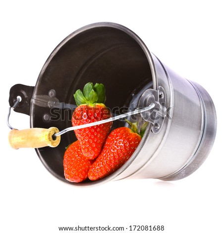 three big juicy strawberries are in a small tin pail  isolated on white background - stock photo