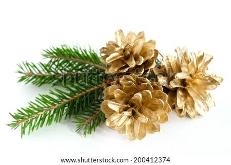 Three big pine cones on the white background - stock photo