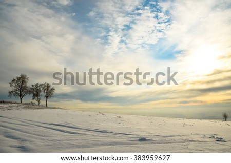 three birch trees on the left on the background of a huge field in the snow