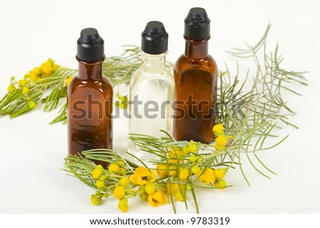 Three bottles of hygienic supplies with fresh flower twig - stock photo