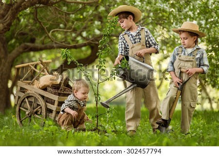 Three boys, gardener planting a tree in the garden of spring day
