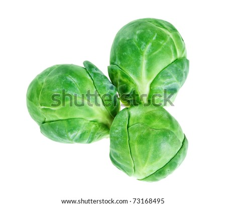Three brussels sprouts heads isolated on white, food background - stock photo