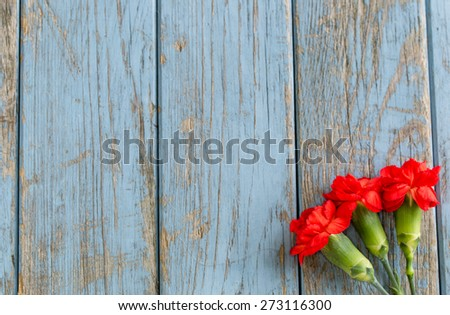 three carnations from above on turquoise vintage wooden background with copy space - stock photo