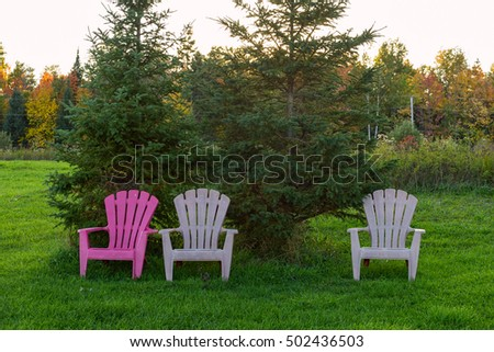 Three chairs on a lawn