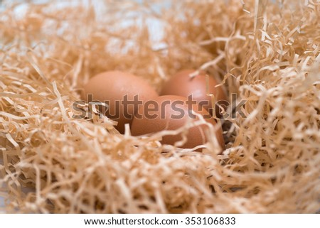 Three chicken eggs in a nest in the straw