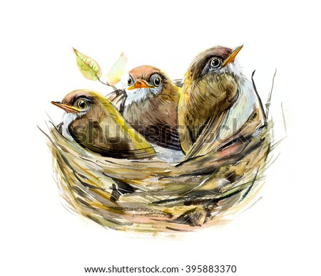 Three chicks. Nest with a baby birds.  Family. Watercolor hand drawn illustration. - stock photo