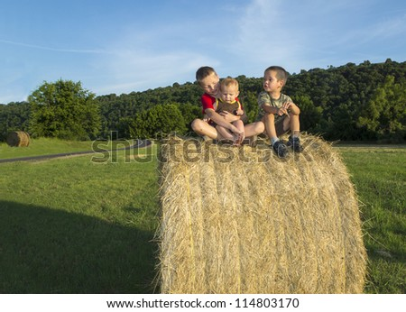 Three children on the roll of hay in the meadow