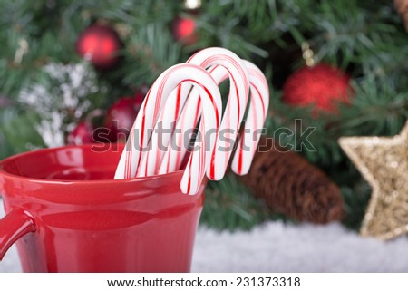 Three Christmas candy canes in a red cup with holiday decorations in background - stock photo
