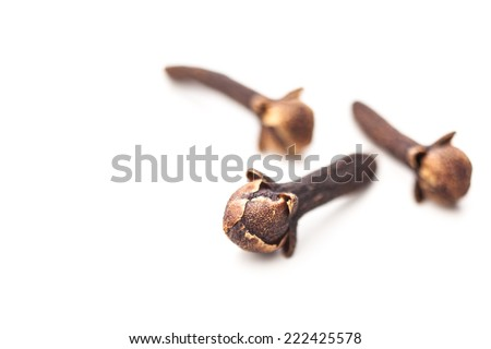 Three cloves isolated on white background - stock photo