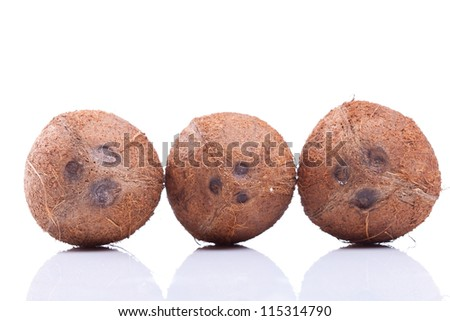 three coconuts in a line over a white background - stock photo