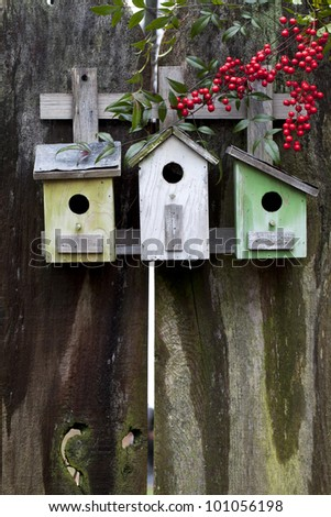 Three colorful birdhouses on old wooden fence with red Nandina berries. (Nandina domestica) Plenty of room for text. - stock photo