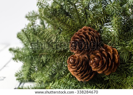 three cones and a branch of spruce - stock photo