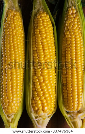 Three Corn with husk shot from above on old harvesting table. - stock photo
