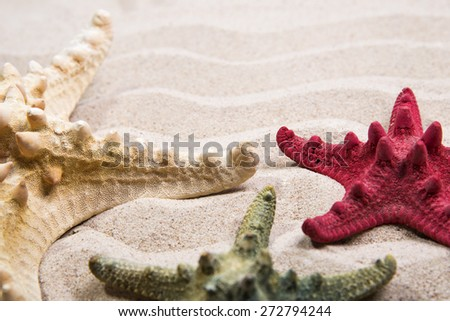 Three different color starfishes on the wave's sand background - stock photo