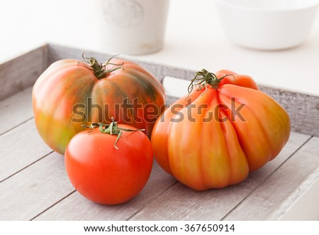 Three different organic tomatoes from Spain.