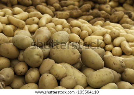 Three different sorts of potatoes piled on a market stand outlay - stock photo