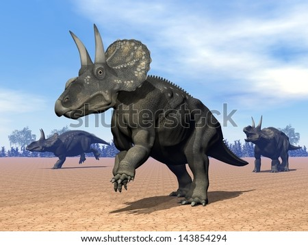 Three dinoceratops dinosaur in the desert by daylight - stock photo
