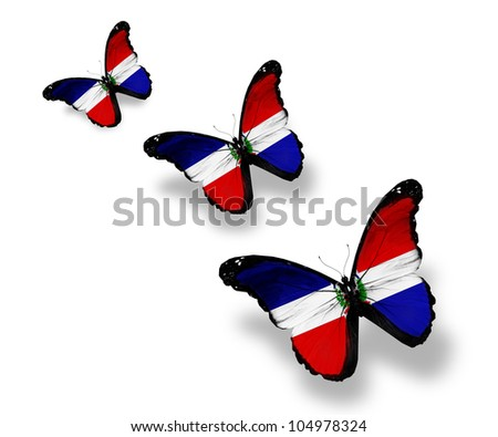 Three Dominican Republic flag butterflies, isolated on white - stock photo