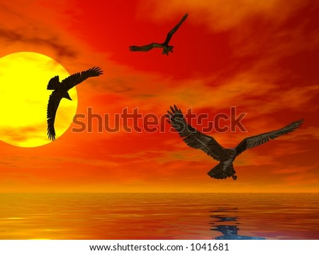 Three eagles flying at sunset above the sea