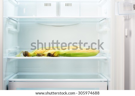 Three ears of corn on shelf of open empty refrigerator. Weight loss diet concept.
