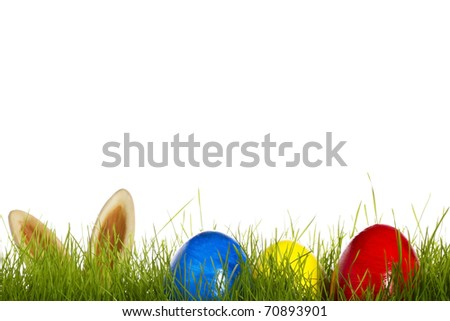 three easter eggs in grass with ears from a easter bunny in background on white - stock photo