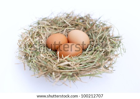 Three eggs in a nest isolated on a white background.