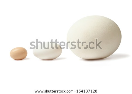 Three eggs of different size - chicken anserous and ostrich stands lined over white background - stock photo