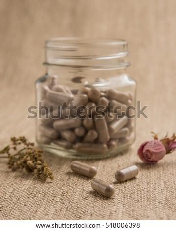 Placenta Stock Images Royalty Free Images Amp Vectors