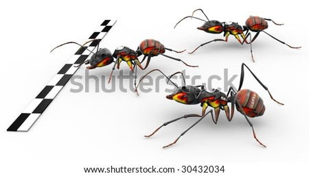 Three fire ants crossing the finish line ready for victory. - stock photo