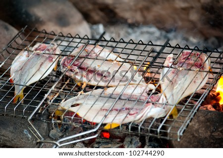 three fishes roasting on a gridiron over fire