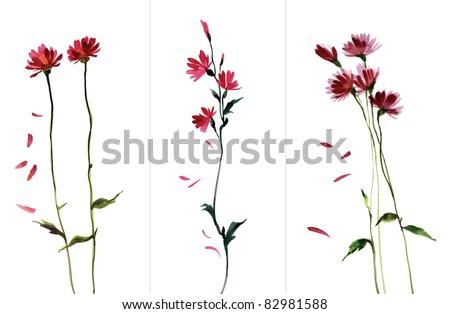 Three flowers - stock photo