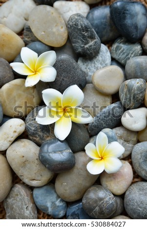 Three frangipani and therapy stones