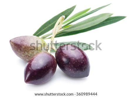Three fresh olives with leaves on the white background. - stock photo