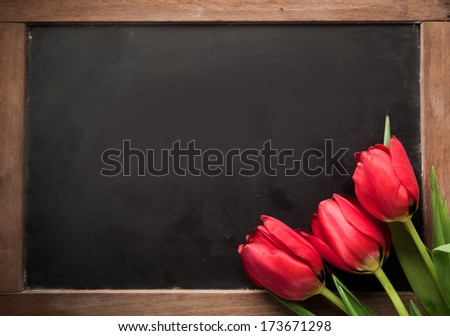 Three fresh red tulips arranged in the corner on a vintage school slate with blank copyspace for your text - stock photo