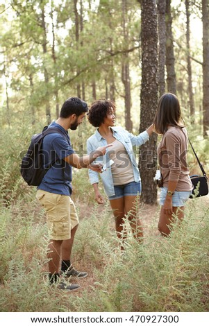 Three friends pointing at something in a pine tree forest in the late afternoon sunshine while looking at the cell phone looking worried