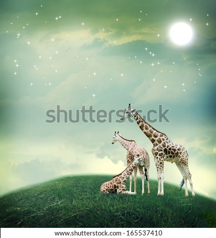 Three giraffes relaxing on the fantasy landscape - stock photo