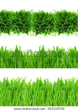 three  green grass borders isolated on white background