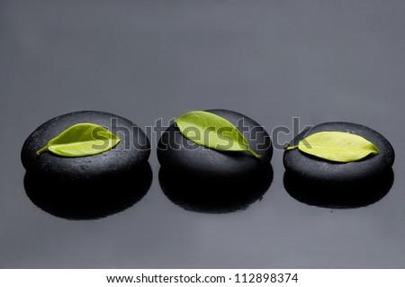 Three green leaf on zen stones reflection - stock photo