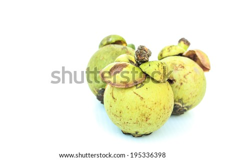 Three Green mangosteen on white background