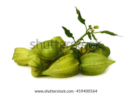 three green tomatoes with husk on white background
