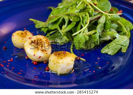 Three grilled seasoned savory Saint Jacques, or scallops, with mixed leafy green herb salad for a delicious seafood appetizer - stock photo