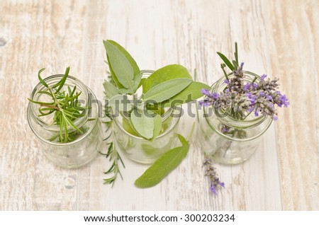 Three herbs in glasses on a rustic wooden table - stock photo