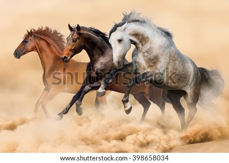 Three horses run gallop in dust - stock photo