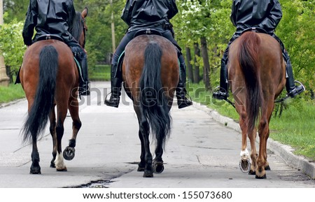 three horses with equestrians in a police form, the rear view - stock photo