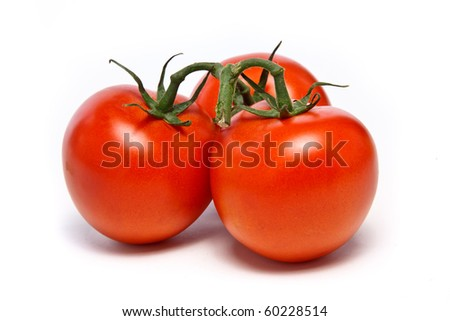 Three juicy vine ripened tomatoes still on the vine